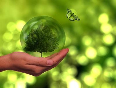 Arrivano i finanziamenti per l'efficienza energetica e le fonti rinnovabili